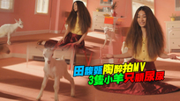 田馥甄陶醉拍MV 3隻小羊只顧尿尿