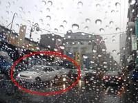 超惡劣駕駛 不滿被叭 竟以花盆砸後車並倒車衝撞