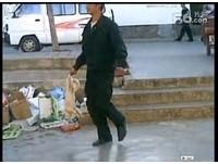倒提猛摔 雲南大學被控追殺流浪狗