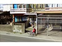 不出門能拍天下事 Google驚奇街景成攝影師作品