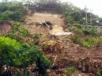台東豪雨 農委會:發芽稻穀無上限收購
