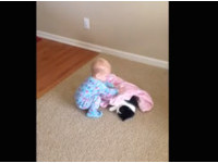 怕貓咪睡覺著涼 寶寶貼心幫蓋被子