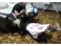 看見寶寶被「打」 黑貓捨身撲咬守護小主人
