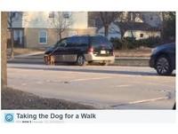 懶主人開快車遛狗 可憐小狗被迫在馬路上狂奔