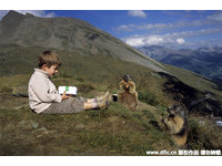從4歲到11歲,馬特奧與土撥鼠的友誼會一直繼續。(圖/Caters/東方IC)