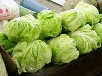 林杰樑臉書提醒:多高纖、少肥肉 對抗毒物飲食要訣