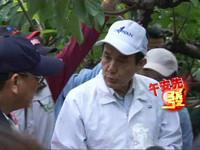 台東勘災 馬總統:農委會應檢討災害補助方案