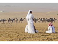 中東MERS疫情未停歇 疾管署:旅遊朝覲遠離駱駝勤洗手