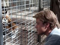 瘋電影/我們買了動物園 達特摩爾野生動物園