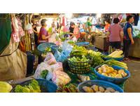菜價漲怎辦? 農委會將釋出「因應4月颱風」庫存蔬菜
