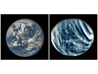 都位於太陽適居區 為何我們住在地球而不是金星?