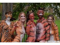 倫敦300名男女為募款裸奔,全身塗滿老虎彩繪跑350公尺。(圖/James Veysey/東方IC)