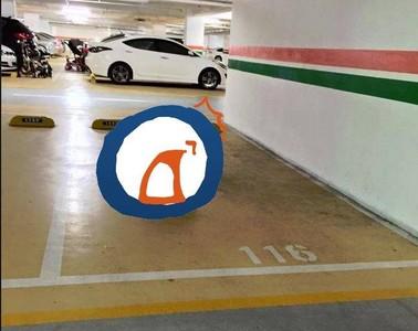 「霸氣停車」還怕颱風淹水 網笑稱:果然有錢就是任性