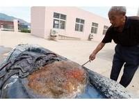 又是太歲肉靈芝? 青島挖出巨型膠物如肥肉