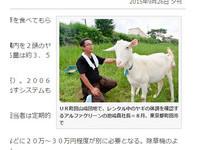 療癒又環保 日公司出租50隻山羊除草