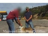 送貨員愛獸交玩「以獸易獸」 用自己的狗跟人換羊來搞