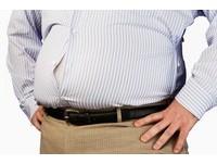 「解剖」胖子給你看! 他們心臟、動脈、肝肺都很有事