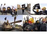 黃色小鴨也反恐 ISIS聖戰士統統變「鴨頭」!