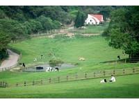 徜徉大自然拍意境美照!全台最受歡迎的「5大休閒農場」