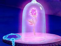 向宅宅伴侶求婚必學!《美女與野獸》玻璃瓶玫瑰好浪漫