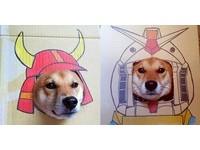 柴柴一秒變維尼?!日本插畫女孩惡搞自家狗狗全記錄