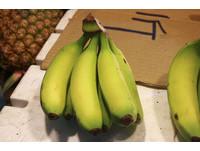 氣候異常讓水果貴翻天!一串香蕉漲破百元