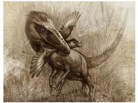 科學家發現「像狼的恐龍」 以幼齒飛龍為食!