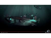 太平洋發現新物種! 酷黑會發光「忍者燈籠鯊」
