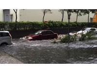 「陸地上開遊艇的概念」大雨讓楊梅火車站前馬路不見了