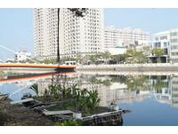 台南運河出現新小島! 成大學生用保麗龍和蚵架蓋成