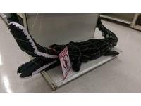 大賣場公然販售鱷魚?網友直呼:高手在民間