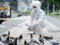 陸出現H7N9病例 陸委會籲民眾赴陸要多注意