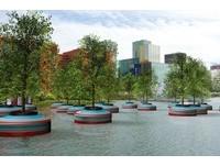 鹿特丹最新景點 種20棵水上漂流「樹」