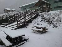 雪東線成一片銀白世界!雪霸「雪季管制」20日登場
