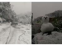 從南到北都飄雪! 長輩傳說:雪下很多,颱風會很大