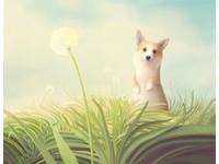 短腿柯基站起來也太萌!畫出動物隱藏性格的繪本風插畫