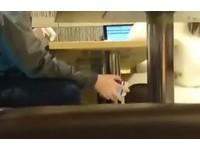 男約保險女業務喝咖啡 手伸桌下猛拍黑絲腿