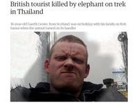 泰國大象突然抓狂 少女目睹父親被象牙刺死