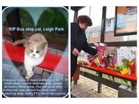 超親人巴士貓被虐打死亡 居民獻花、集資做紀念碑哀悼