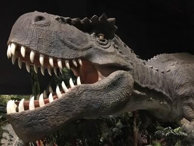 「勇闖侏羅紀」探險體驗 「恐龍換牙?」成看展奇景