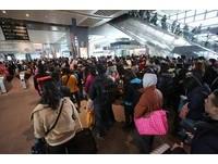 高鐵春節疏運已破127萬人次 初三創新高單日破25萬人次