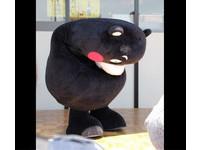 熊本熊低頭為南台大地震祈福 日Yahoo!募破7000萬日圓