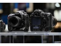 Nikon D5 實拍!夜景、高速運動、生態攝影照片欣賞