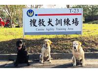 台中消防局搜救「拉拉」命名活動 7日起正式開跑!