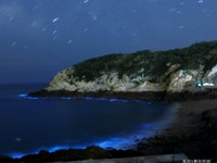 馬祖提早1個月出現星沙、藍眼淚!輕踩沙灘即點點藍光