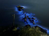 藍眼淚是海洋污染「美麗危機」?網傳謠言讓馬祖人無奈