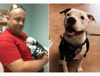 從火場獲救的小狗 7成燒傷康復後…成疤面名譽消防員