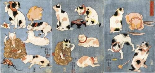 愛貓成痴的貓咪浮世繪滿足貓奴 ... : 慣用語 : すべての講義
