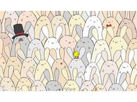 沒鷹眼找嘸!兔群把「彩蛋」藏哪 網虧:下蛋母雞怎麼了