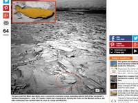 火星上有大魚?NASA好奇號拍到了 尾鰭脊椎超清晰